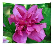 Pink Bloom Tapestry