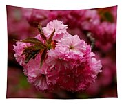 Pink Blooms Tapestry