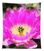 Pink Cactus Flower Tapestry