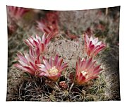 Pink Cactus Flowers 2 Tapestry