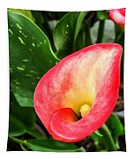 Pink Calla Lily Tapestry