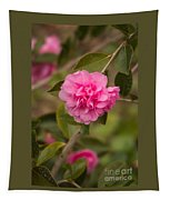 Pink Camellia 2 Tapestry
