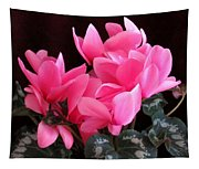 Pink Cyclamen 2  Tapestry