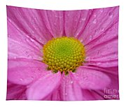 Pink Daisy With Raindrops Tapestry