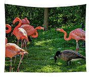 Pink Flamingos And Imposters Tapestry