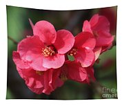 Pink Flowering Quince Tapestry