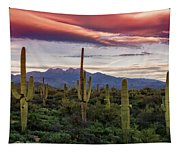 Pink Four Peaks Sunset  Tapestry