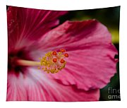 Pink Hibiscus Close-up Tapestry