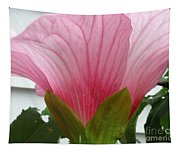 Pink Hibiscus Ready To Bloom Tapestry