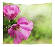Pink Light Rose Of Sharon 2016 Tapestry