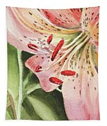 Pink Lily Close Up Tapestry