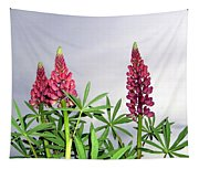 Pink Lupins Tapestry