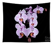 Pink Orchid Iv Tapestry