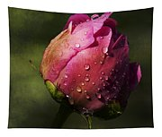 Pink Peony Bud With Dew Drops Tapestry