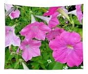 Pink Petunia Flower 11 Tapestry