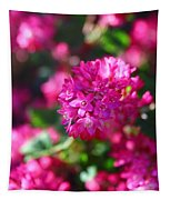 Pink Profusion 2 Tapestry