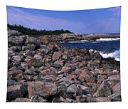 Pink Rock Shoreline Tapestry