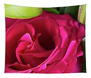 Pink Rose And Bud Close-up Tapestry