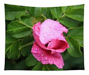 Pink Rose Bud Tapestry