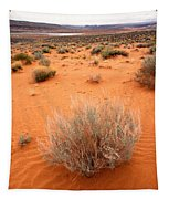 Pink Sand Of Lake Powell Tapestry