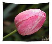 Pink Tulip Closeup Tapestry