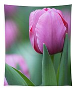Pink Tulip Love Tapestry
