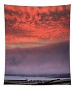 Pink Winter Sunrise Tapestry by James Truett