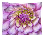 Pink Zinnia Close Up Tapestry