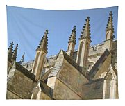Pinnacles Tapestry