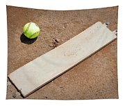 Pitchers Mound Tapestry