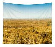 Plain Plains Tapestry