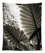 Plant 8661 Tapestry