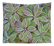 Plant Pattern Tapestry