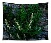 Plants Grow Anywhere Tapestry