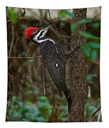 Plastic Wrapped Pileated Woodpecker Tapestry