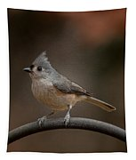 Plastic Wrapped Titmouse Tapestry