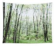 Pleasure Of Pathless Woods - Alt Tapestry