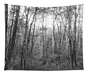 Pleasure Of Pathless Woods Bw Tapestry