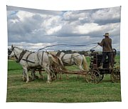 Plowing In Lancaster County Tapestry