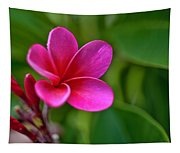 Plumeria - Royal Hawaiian Tapestry