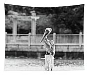 Point Clear Alabama Brown Pelican - Bw Tapestry