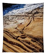 Point Lobos Abstract Tapestry