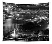 Point State Park In Black And White Tapestry