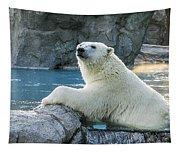 Polar Bear Tapestry
