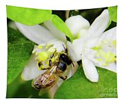 Pollen - Covered - Bee Tapestry