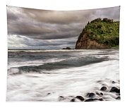 Pololu Whitewash Tapestry