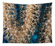 Polyp Vee Tapestry
