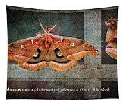 Polyphemus Moth Tapestry