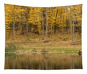 Pond And Woods Autumn 1 Tapestry