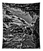 Pond At Great Falls #4 Tapestry